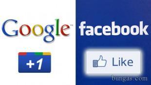 """Google """"like"""" pentru rezultatele căutărilor"""