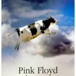 Pink Floyd in Rosu – Michele Mari