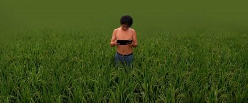 zola_grass_bottom