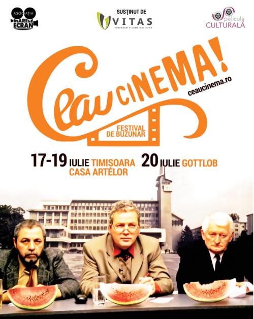 ceau cinema 2014