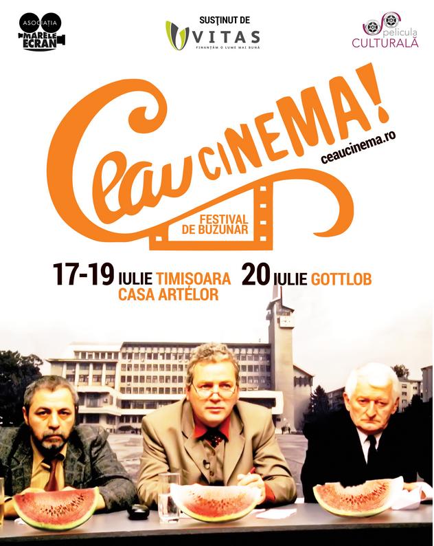 Ceau, Cinema! Festival de Buzunar!